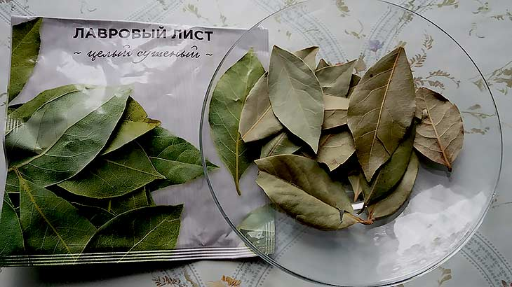 Лавровый лист, лечебных свойства, 10 народных рецептов применения