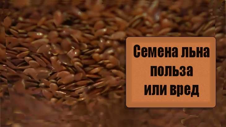 Семена льна, состав, чем полезны, для кого  вредны, рецепты, рекомендации