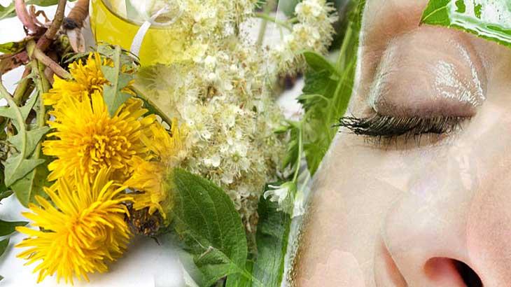 10 масок для лица из трав, процесс приготовления и использования