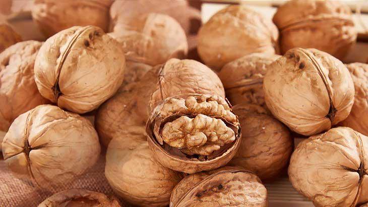 Грецкие орехи, свойства, состав, польза, 7 причин иметь их на столе