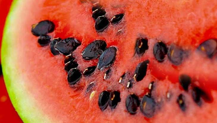 В чем польза арбузных семечек