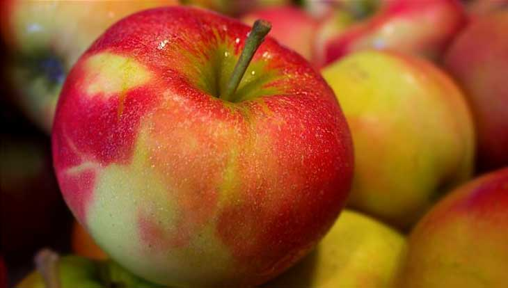 Что надо сделать, чтобы хранить новый урожай яблок всю зиму, советы
