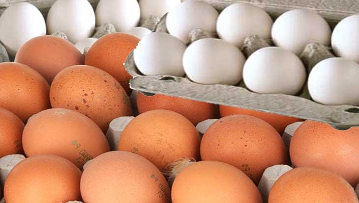Как выбрать полезные и свежие куриные яйца, секреты, советы, рекомендации