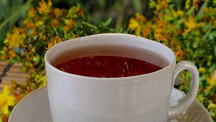 чай со зверобоем поленый напиток