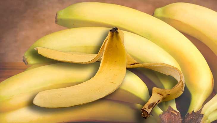 Кожура бананов, какая польза в повседневной жизни человека