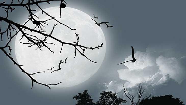 Приметы и поверья о Луне, что можно, что нельзя при новолунии или полнолунии, как привлечь деньги, как удержать денежный поток