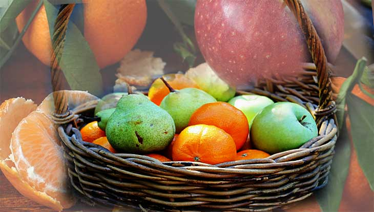 Какие отходы с праздничных застолий нужно не выкидывать, а использовать